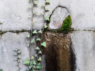 017 Degrado urbano ambiente - Bonifica Gasometri © MTK Gasometri Venezia Srl