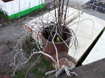 021 Degrado urbano ambiente - Bonifica Gasometri © MTK Gasometri Venezia Srl