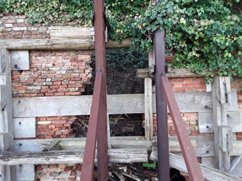 035 Degrado urbano ambiente - Bonifica Gasometri © MTK Gasometri Venezia Srl
